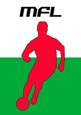 Mini Football Leagues