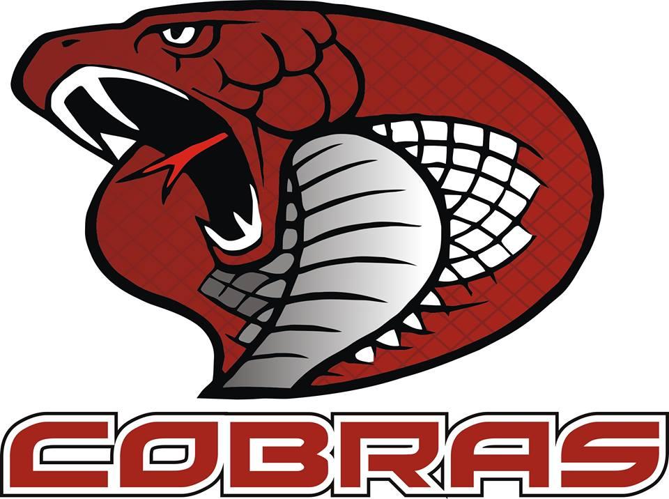 Swansea Cobras Roller Hockey Club